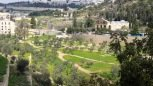 5. Thursday - Garden of Gethsemane