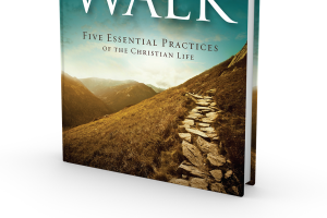 The Walk Cover 3D